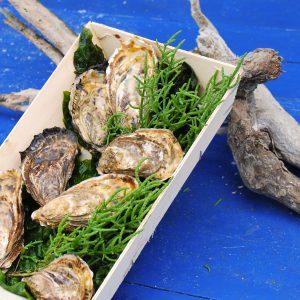 Huîtres spéciales de claire – Paniers de 50