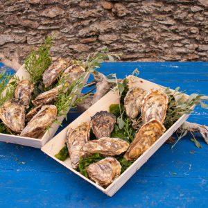 Huîtres fines de claire – Paniers de 100